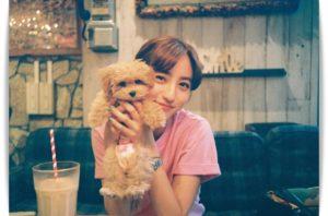 堀田茜と犬