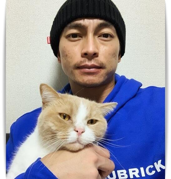 遠藤雄弥と猫