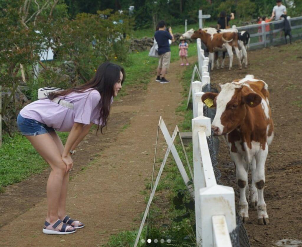 イムウンス選手と牛